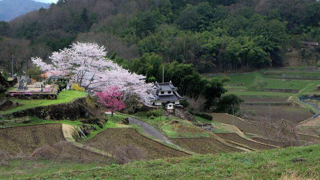 japan-714356_1280